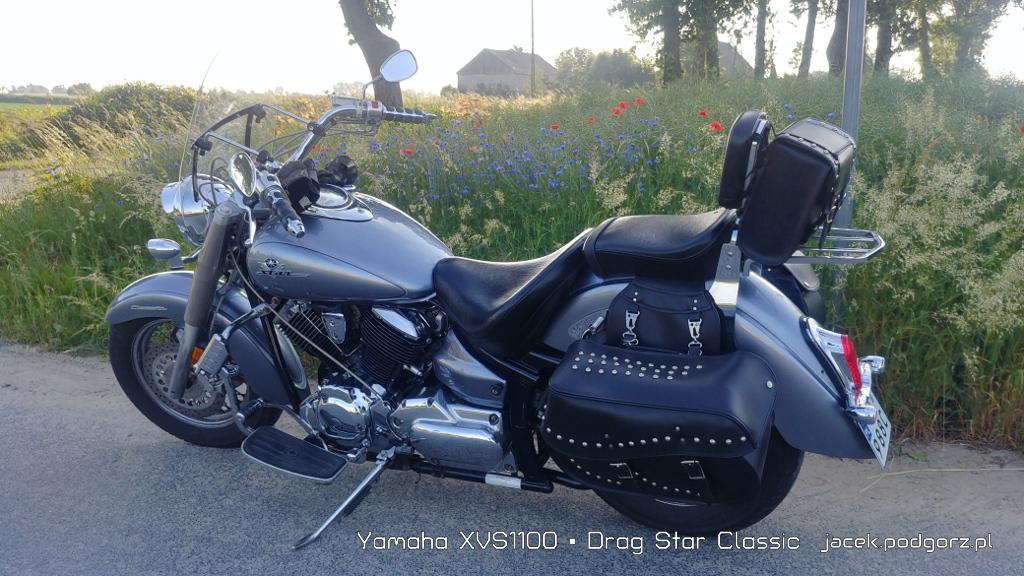 Yamaha XVS1100 • Drag Star Classic  - 3